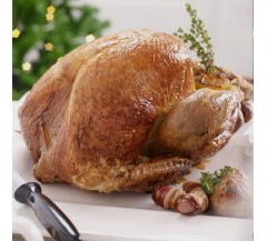 Traditional White Turkey